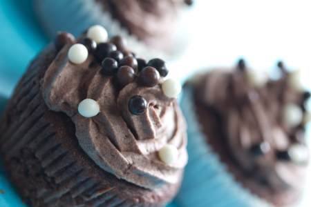 chocolate cupcakes 2 Stock Photo - 16767507