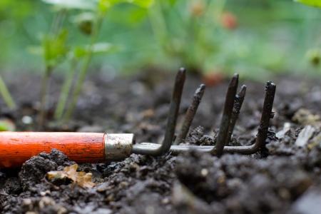 gardening equipment: garden claw in the garden
