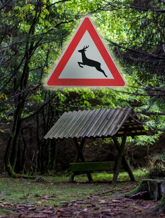 deer crossing sign photo