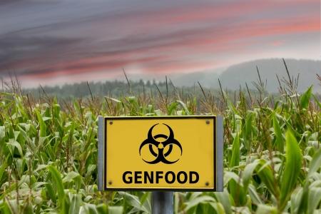 Genfood maïs teken Stockfoto - 22303837