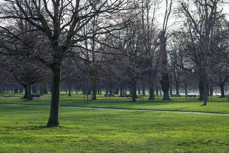 hyde: london hyde park