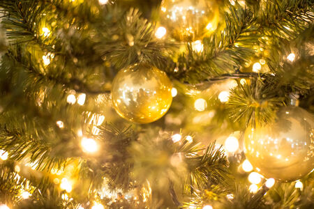 blurry lights: christmas tree background