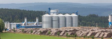 biomasa: planta de cogeneración de biomasa