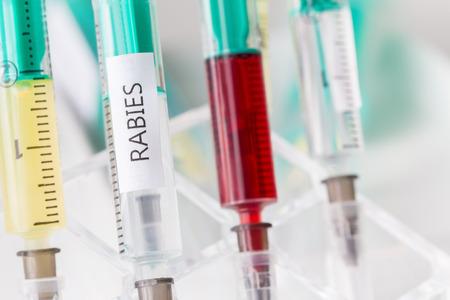 rabies: rabies vaccination