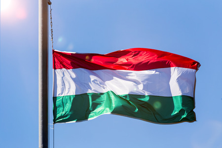 the hungarian national flag 스톡 콘텐츠