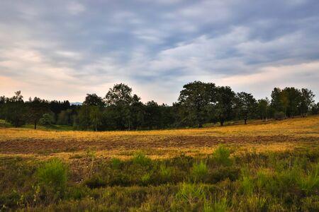 moorland landscape in hdr