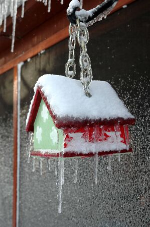 A small bird house caught in an ice storm.