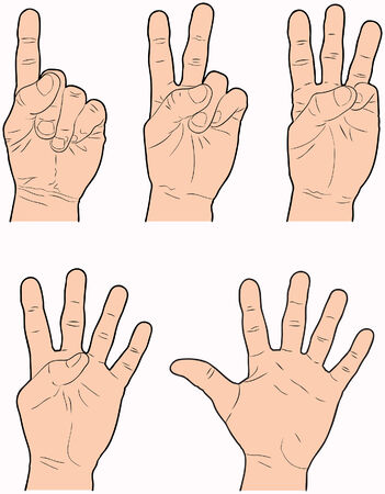 Hands representing the numbers 1 through 5 using fingers.