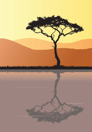 Silhouette of a tree at sunset. Its reflection can be seen in the water.