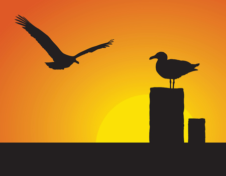 Silhouettes of seagulls, one flying and one standing, in front of the setting sun.