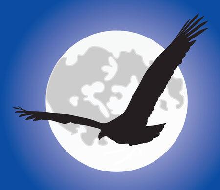 deslizamiento: Silueta de �guila negra sobre una luna llena