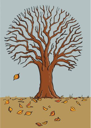 late fall: Leaves fall from a tree in late Fall. Illustration