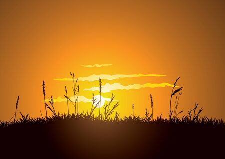 The hot glowing sun sets behind a grassy plain.