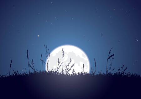 The bright moon rises behind a grassy plain.