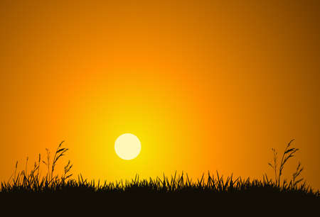 grass silhouette: The hot glowing sun rises up behind a hill silhouetting the field grass.
