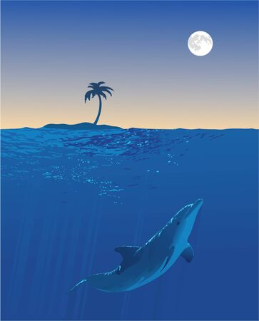seem: An underwater view of a dolphin swimming. Above the water a small island and the full moon can be seem.
