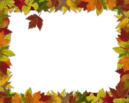 Châssis d'automne sur le thème des feuilles, ratio 8 par 10 Banque d'images - 68713069