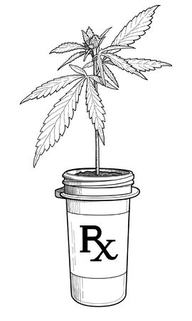 A Marijuana plant growing in a pill bottle as if prescribed by a doctor and given out at a pharmacy. Banque d'images