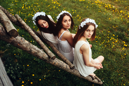 three beautiful girls on the background of a wooden house Stock Photo