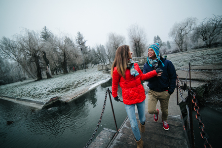 enters: beautiful couple enters a small bridge in a winter park