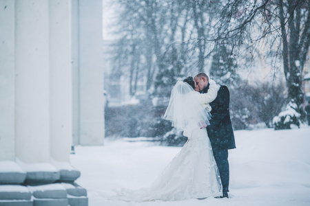 bride and groom background: bride and groom in a winter frost with a snowflow