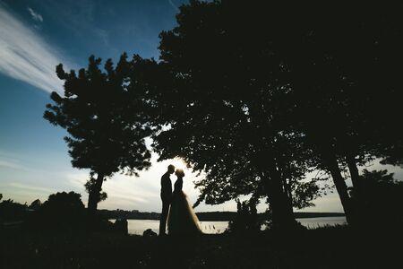 marido y mujer: novio de la novia de pie en el parque y ternura mirando el uno al otro Foto de archivo