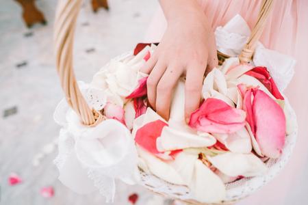 Mãos, agarrar, rosa, pétalas Foto de archivo - 91208013
