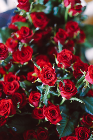 Fresh cut red roses lie on the table, close view Stock fotó
