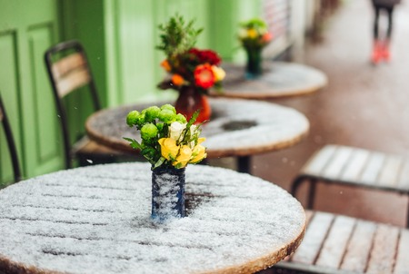 Flowers stand on a snowy table Reklamní fotografie