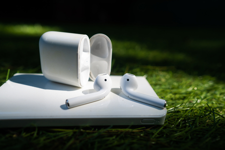 Wireless headphones and powerbank lie on the grass Archivio Fotografico - 114929643