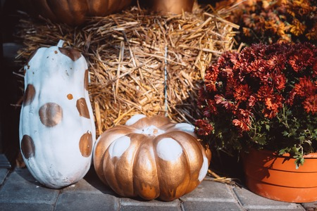 Autumn decoration with pumpkins and flowers at a flower shop on a street in a European city Фото со стока
