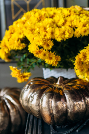 Autumn decoration with pumpkins and flowers on a street in a European city Фото со стока - 121958866