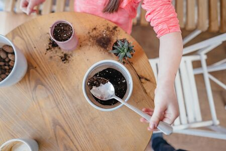 Little girl replant aloe. Little girl digs up the ground for rosetting with a spoon