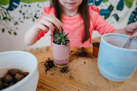 Little girl replanting a house plant in another pot 스톡 콘텐츠