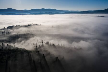 Aerial view of colorful mixed forest shrouded in morning fog Standard-Bild