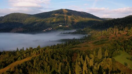Top view of colorful mixed forest shrouded in morning fog on a beautiful autumn day Standard-Bild