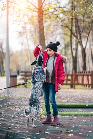Girl child playing with dog in autumn sunny park, leaf fall Banque d'images