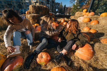Young girls sit on haystacks among pumpkins. The concept of rural areas in a modern city. Photo Zone