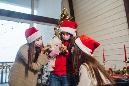 Several girls play with a small dog on New Years Eve Banque d'images