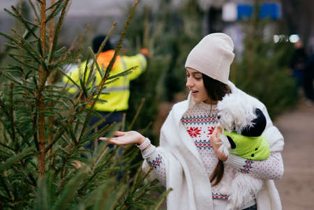 Woman with a white dog in her arms near a green Christmas trees Banque d'images