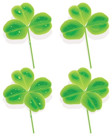 Vector four and three Leaf Clover. With raindrops and without Vector