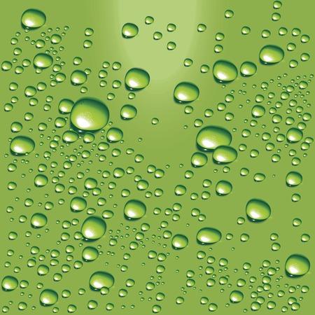 Vector green water bubbles Vector