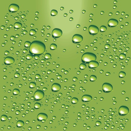 water bubbles: Vector green water bubbles Illustration
