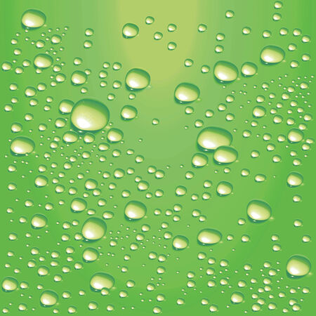 condensation on glass: Vector lime-green water bubbles Illustration
