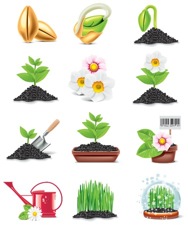 seedling growing: gardening icon set Illustration