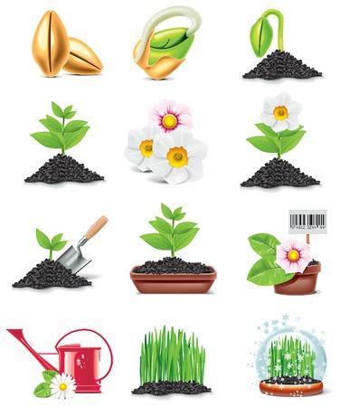 seed growing: gardening icon set Illustration