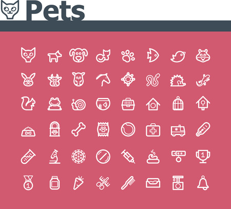lizard: Pets icon set