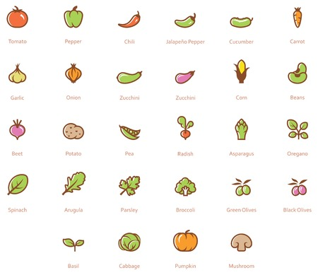 Set of the vegetables related icon Ilustração