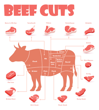 Vector beef cuts chart and pieces of beef, used for cooking steak and roast - t-bone, rib eye, porterhouse, tomahawk, filet mignon, striploin, sirloin, tri-tip and other popular steak cuts