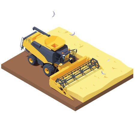 Vector isometric combine harvester working in wheat field. Wheat harvesting process with modern combine. Agricultural machinery cropping cereal field Ilustração